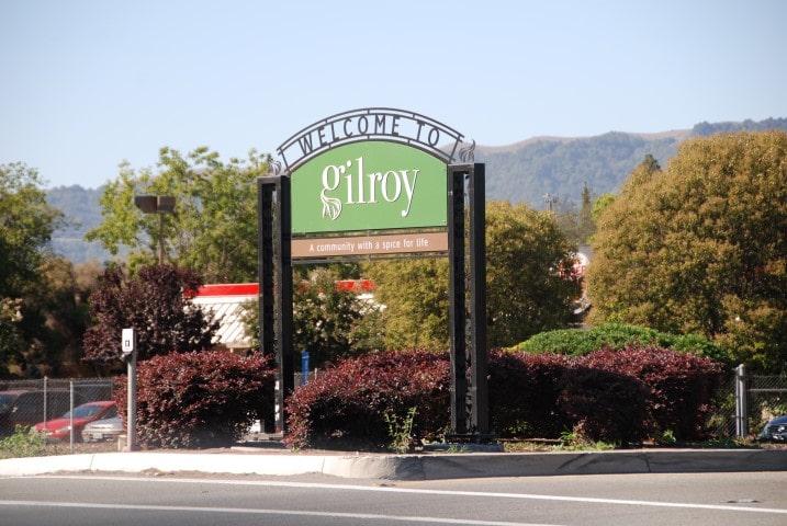 Gilroy (Small)